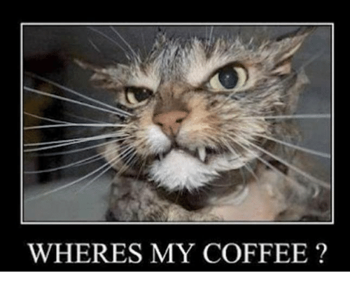 wheres my coffee 13678669 ✅ 25 best memes about wheres my coffee wheres my coffee memes,Wheres My Coffee Meme