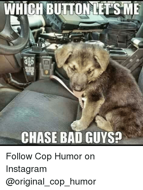 Bad, Instagram, and Memes: WHICH BUTTONLETSME  NALETS  CHASE BAD GUYS? Follow Cop Humor on Instagram @original_cop_humor