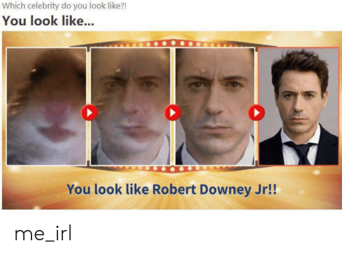 Robert Downey Jr., Robert Downey Jr, and Irl: Which celebrity do you look like?!  You look like...  You look like Robert Downey Jr!! me_irl