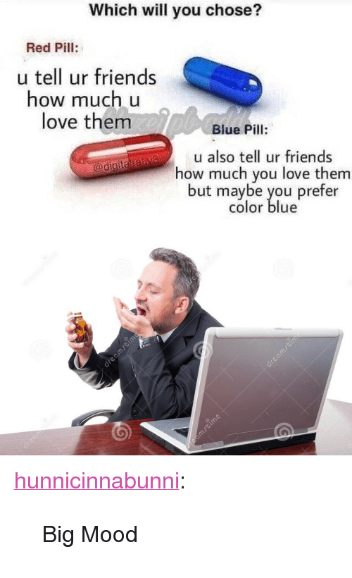"Friends, Love, and Mood: Which will you chose?  Red Pill:  u tell ur friends  how much u  love them  Blue Pill:  u also tell ur friends  how much you love them  but maybe you prefer  color blue <p><a href=""http://hunnicinnabunni.tumblr.com/post/165803898101/big-mood"" class=""tumblr_blog"">hunnicinnabunni</a>:</p>  <blockquote><p>Big Mood</p></blockquote>"