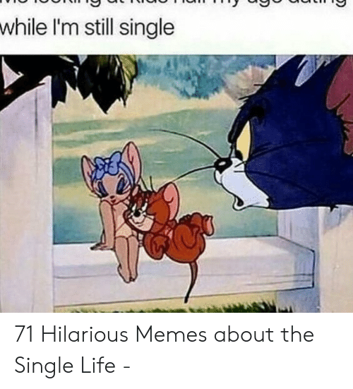 While Im Still Single 71 Hilarious Memes About The Single