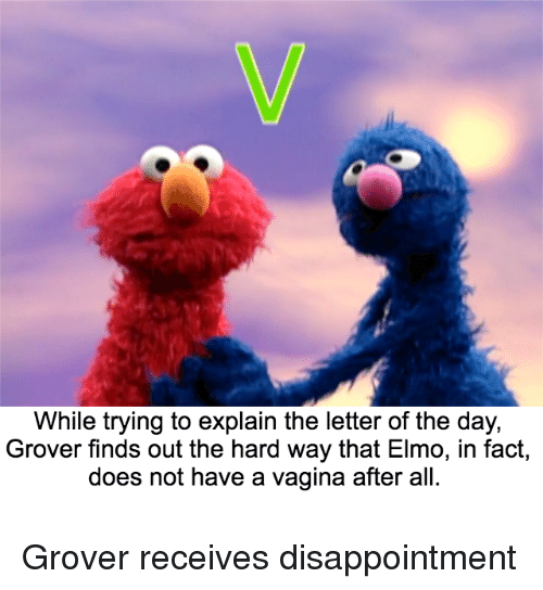 While Trying to Explain the Letter of the Day Grover Finds Out the