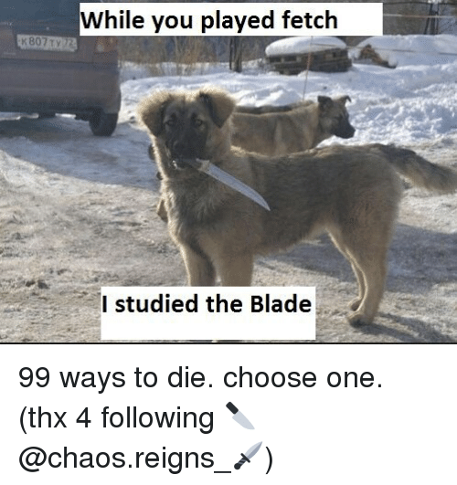 Blade, Choose One, and Memes: While you played fetclh  I studied the Blade 99 ways to die. choose one. (thx 4 following 🔪@chaos.reigns_🗡)