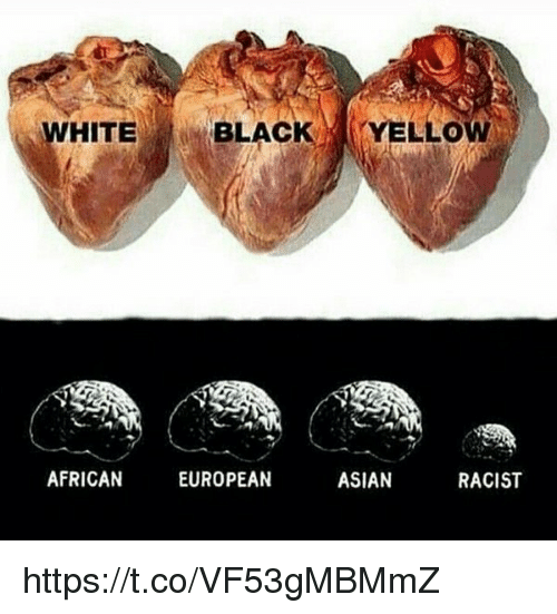 Asian, Memes, and 🤖: WHITE  BLAC  YELLO  ASIAN  AFRICAN  EUROPEAN  RACIST https://t.co/VF53gMBMmZ