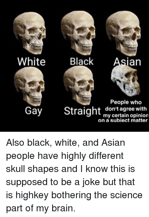 gay brains are different