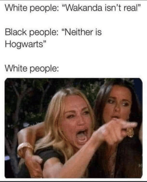 "White People, Black, and White: White people: ""Wakanda isn't real""  1  Black people: ""Neither is  Hogwarts""  White people:"