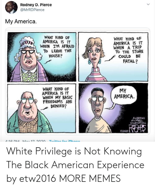 Dank, Memes, and Target: White Privilege is Not Knowing The Black American Experience by etw2016 MORE MEMES