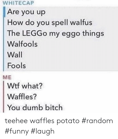 Dumb, Funny, and Wtf: WHITECAP  Are you up  How do you spell walfus  The LEGGO my eggo things  Walfools  Wall  Fools  ME  Wtf what?  Waffles?  You dumb bitch teehee waffles potato #random #funny #laugh