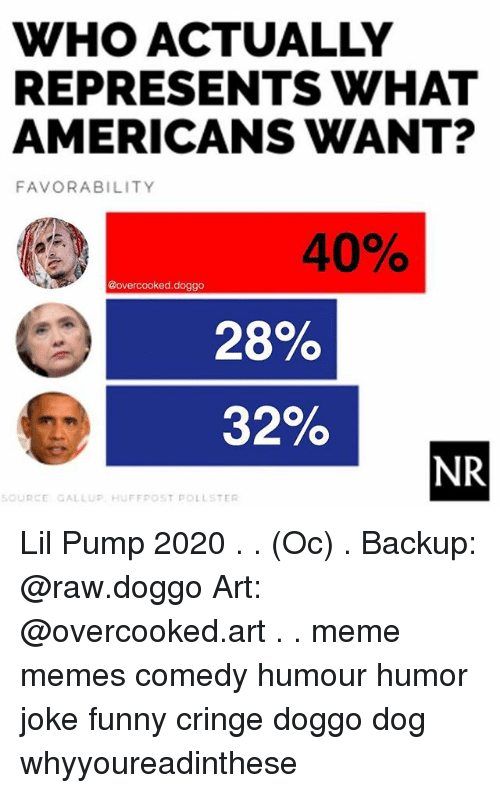 Funny, Meme, and Memes: WHO ACTUALLY  REPRESENTS WHAT  AMERICANS WANT?  FAVORABILITY  40%  @overcooked.doggo  28%  32%  NR  SOURCE GALLUP HUFFRPOST POLLSTER Lil Pump 2020 . . (Oc) . Backup: @raw.doggo Art: @overcooked.art . . meme memes comedy humour humor joke funny cringe doggo dog whyyoureadinthese