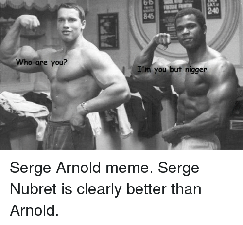 who are you 65 240 im you but nigger serge 4205768 ✅ 25 best memes about arnold schwarzenegger arnold,Arnold Meme