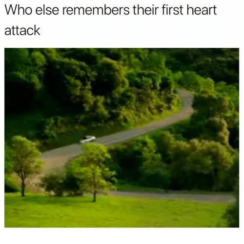 Heart, Heart Attack, and Who: Who else remembers their first heart  attack