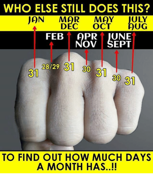 Memes, Sept, and 🤖: WHO ELSE STILL DOES THIS?  AN MAR MAY JULY  UG  DEC OC  FEB APRT JUNE  OV SEPT  28/29 31 30 31 30 31  31  TO FIND OUT HOW MUCH DAYS  A MONTH HAS..!!