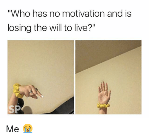 who has no motivation and is losing the will to 27775833 25 best losing the will to live memes will to live memes, the