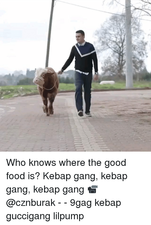 9gag, Food, and Memes: Who knows where the good food is? Kebap gang, kebap gang, kebap gang 📹 @cznburak - - 9gag kebap guccigang lilpump