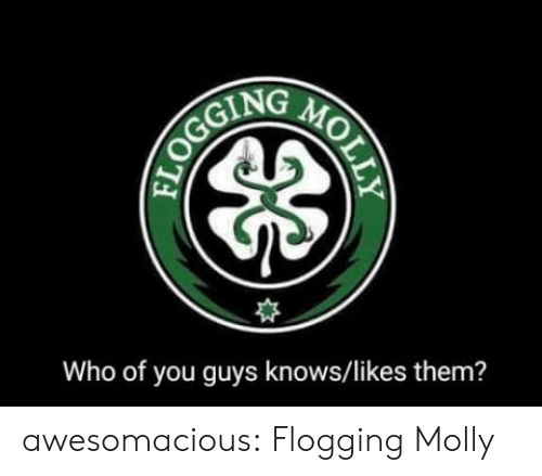 Molly, Tumblr, and Blog: Who of you guys knows/likes them? awesomacious:  Flogging Molly