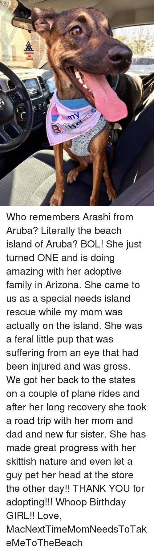 Birthday, Dad, and Family: Who remembers Arashi from Aruba? Literally the beach island of Aruba? BOL! She just turned ONE and is doing amazing with her adoptive family in Arizona. She came to us as a special needs island rescue while my mom was actually on the island. She was a feral little pup that was suffering from an eye that had been injured and was gross. We got her back to the states on a couple of plane rides and after her long recovery she took a road trip with her mom and dad and new fur sister. She has made great progress with her skittish nature and even let a guy pet her head at the store the other day!! THANK YOU for adopting!!! Whoop Birthday GIRL!!   Love, MacNextTimeMomNeedsToTakeMeToTheBeach