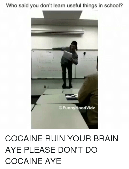 School, Brain, and Cocaine: Who said you don't learn useful things in school?  @FunnyHoodVidz COCAINE RUIN YOUR BRAIN AYE PLEASE DON'T DO COCAINE AYE