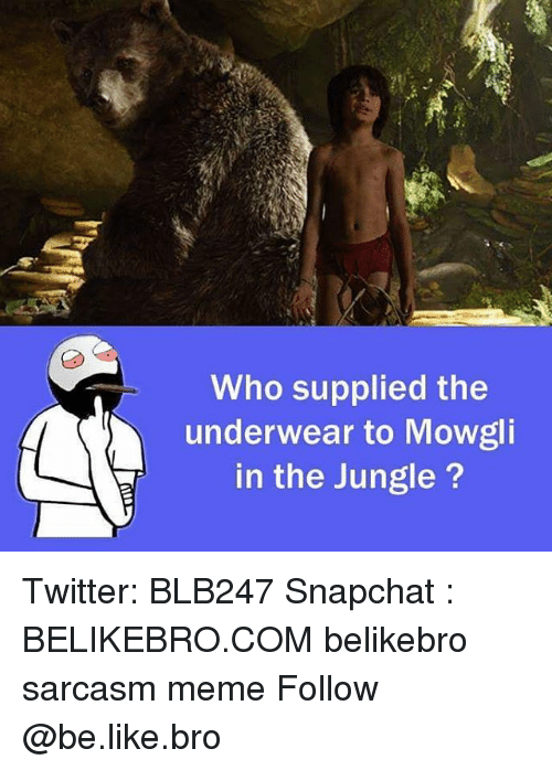 Memes, 🤖, and Bro: Who supplied the  underwear to Mowgli  in the Jungle Twitter: BLB247 Snapchat : BELIKEBRO.COM belikebro sarcasm meme Follow @be.like.bro