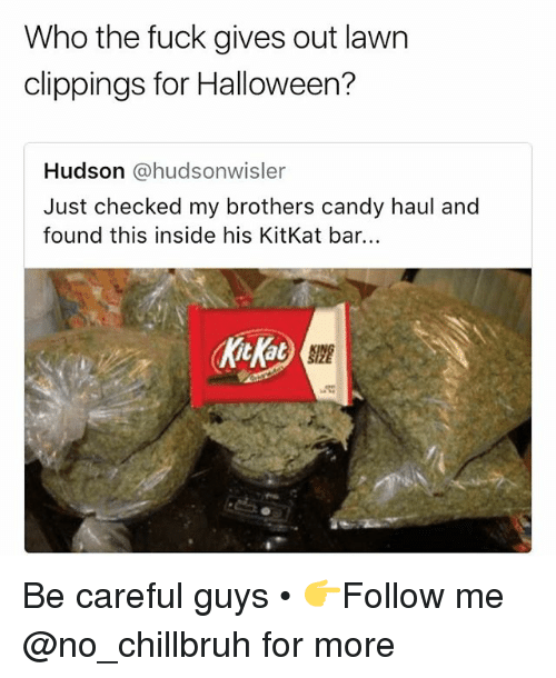 Candy, Funny, and Halloween: Who the fuck gives out lawn  clippings for Halloween?  Hudson @hudsonwisler  Just checked my brothers candy haul and  found this inside his KitKat bar.  kicKat Be careful guys • 👉Follow me @no_chillbruh for more