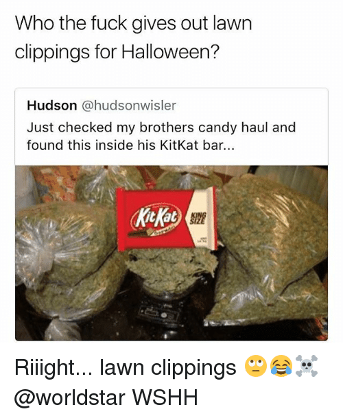 Candy, Halloween, and Memes: Who the fuck gives out lawn  clippings for Halloween?  Hudson @hudsonwisler  Just checked my brothers candy haul and  found this inside his KitKat bar. Riiight... lawn clippings 🙄😂☠️ @worldstar WSHH