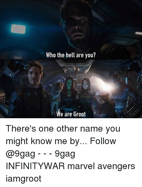 9gag, Memes, and Avengers: Who the hell are you?  We are Groot There's one other name you might know me by... Follow @9gag - - - 9gag INFINITYWAR marvel avengers iamgroot