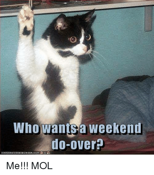 Memes, 🤖, and Weekend: Who Wants a weekend  do-over Me!!! MOL