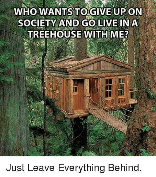 Live, Who, and Treehouse: WHO WANTS TO GIVE UP ON  SOCIETY AND GO LIVE INA  TREEHOUSE WITH ME? <p>Just Leave Everything Behind.</p>