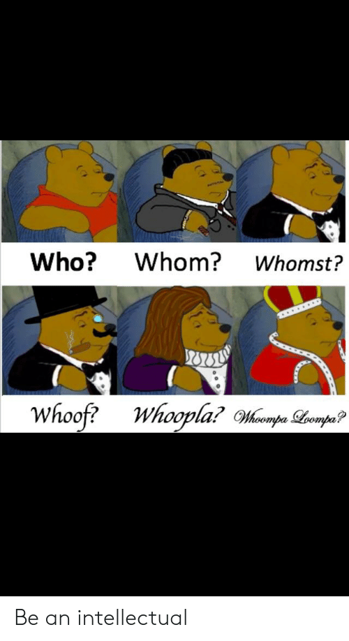 Who?Whom? Whomst? Oovla Be an Intellectual | Reddit Meme on