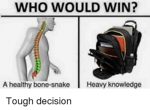 Snake, Tough, and Knowledge: WHO WOULD WIN?  A healthy bone-snake Heavy knowledge Tough decision