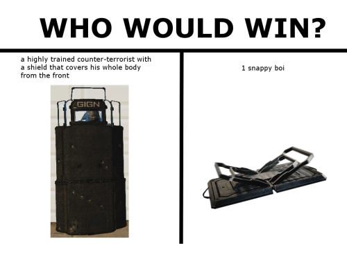 Covers, Shield, and Boi: WHO WOULD WIN?  a highly trained counter-terrorist with  a shield that covers his whole body  from the front  1 snappy boi  GIGN