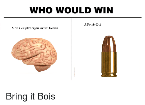 Who Would Win A Pointy Boi Most Complex Organ Known To Man