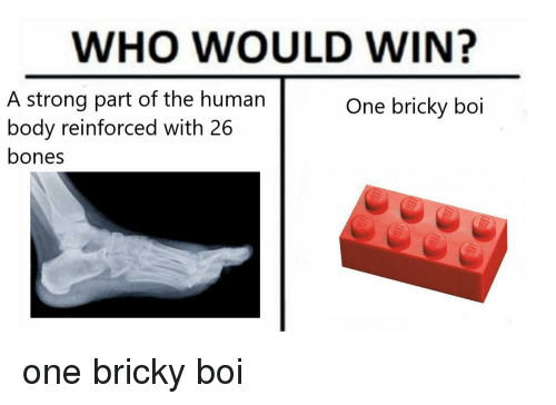 Bones, Strong, and Boi: WHO WOULD WIN?  A strong part of the human  body reinforced with 26  bones  One bricky boi one bricky boi