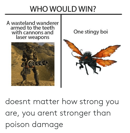 Stingy, Strong, and How: WHO WOULD WIN?  A wasteland wanderer  armed to the teeth  with cannons and  laser weapons  One stingy boi doesnt matter how strong you are, you arent stronger than poison damage