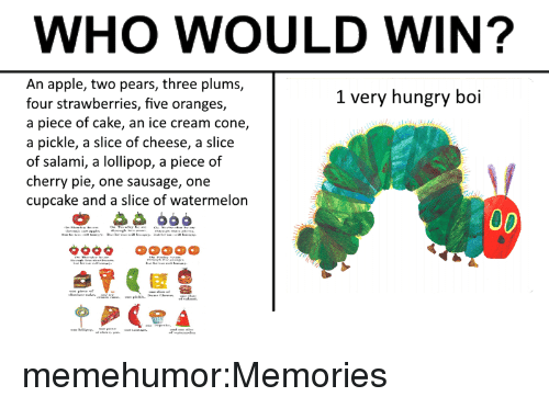 Apple, Hungry, and Target: WHO WOULD WIN?  An apple, two pears, three plums,  four strawberries, five oranges,  a piece of cake, an ice cream cone,  a pickle, a slice of cheese, a slice  of salami, a lollipop, a piece of  cherry pie, one sausage, one  cupcake and a slice of watermelon  1 very hungry boi memehumor:Memories