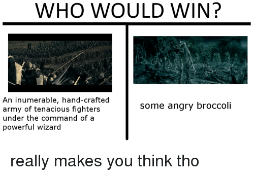 Army, Lord of the Rings, and Angry: WHO WOULD WIN?  An inumerable, hand-crafted  army of tenacious fighters  under the command of a  powerful wizard  some angry broccoli