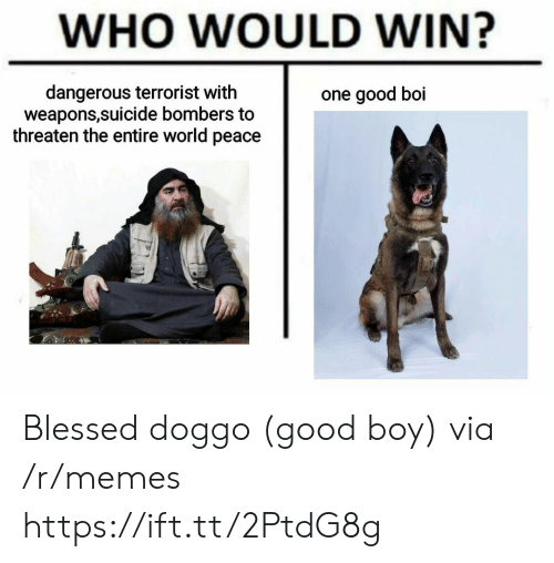 Blessed, Memes, and Good: WHO WOULD WIN?  dangerous terrorist with  weapons,suicide bombers to  threaten the entire world peace  one good boi Blessed doggo (good boy) via /r/memes https://ift.tt/2PtdG8g