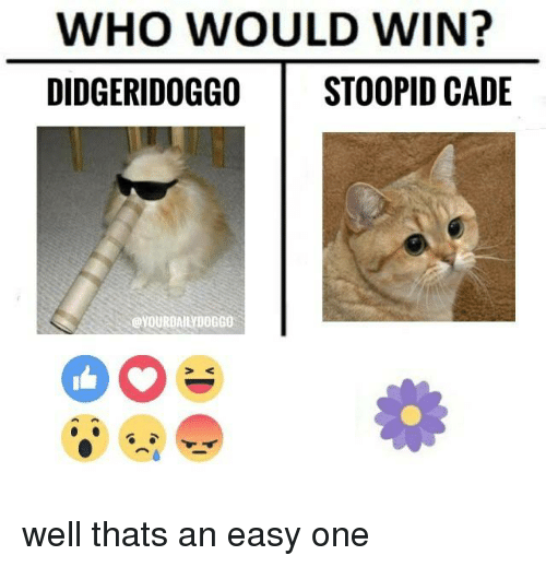 Memes, 🤖, and Who: WHO WOULD WIN?  DIDGERIDOGGO STOOPID CADE well thats an easy one