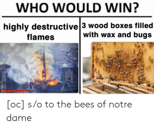 WHO WOULD WIN? Highly Destructive 3 Wood Boxes Filled With