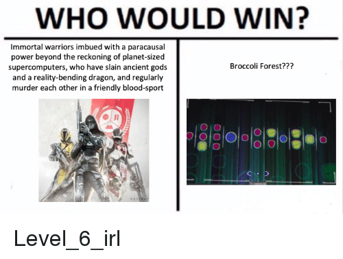 Destiny, Power, and Warriors: WHO WOULD WIN?  Immortal warriors imbued with a paracausal  power beyond the reckoning of planet-sized  supercomputers, who have slain ancient gods  and a reality-bending dragon, and regularly  murder each other in a friendly blood-sport  Broccoli Forest???