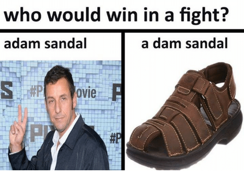 Dank Memes, Fight, and Who: who would win in a fight?  adam sandal  a dam sandal  ovie  邾