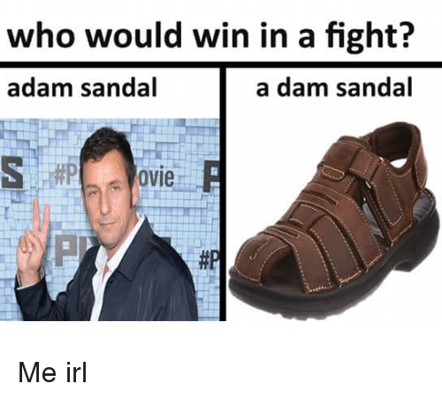 Irl, Me IRL, and Fight: who would win in a fight?  adam sandal  a dam sandal  ovie R