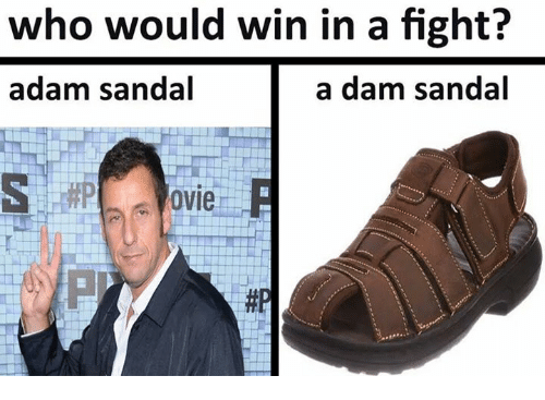 Memes, Sandals, and Fight: who would win in a fight?  adam sandal  a dam sandal  OVIe