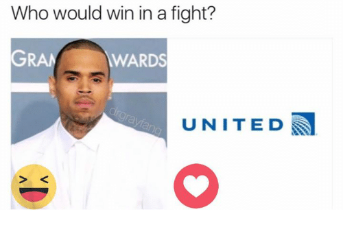 Memes, United, and Fight: Who would win in a fight?  WARDS  UNITED