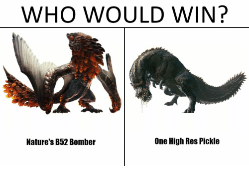Who Would Win Nature S B52 Bomber One High Res Pickle