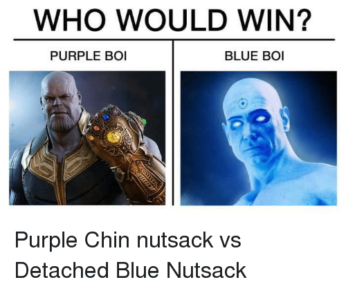 WHO WOULD WIN? PURPLE BOI BLUE BOI | Reddit Meme on ME ME