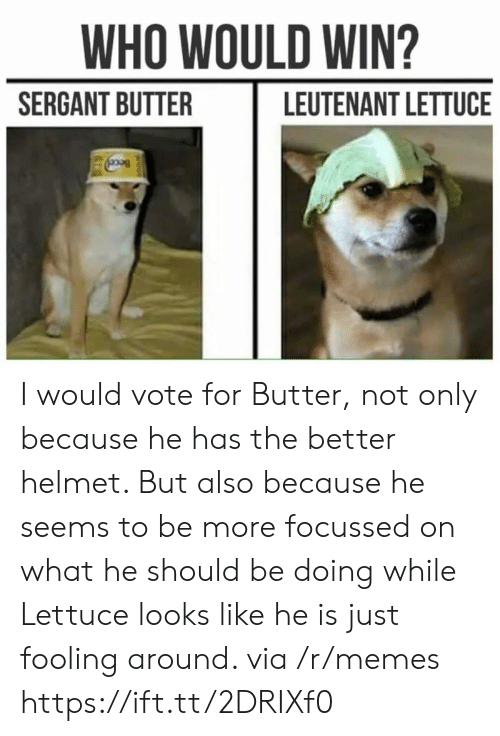 Memes, Who, and Lettuce: WHO WOULD WIN?  SERGANT BUTTER  LEUTENANT LETTUCE I would vote for Butter, not only because he has the better helmet. But also because he seems to be more focussed on what he should be doing while Lettuce looks like he is just fooling around. via /r/memes https://ift.tt/2DRIXf0