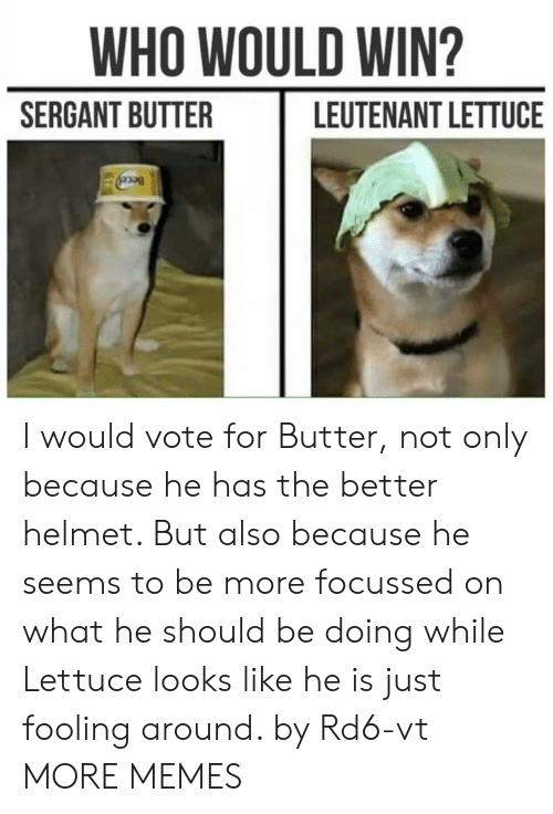 Dank, Memes, and Target: WHO WOULD WIN?  SERGANT BUTTER  LEUTENANT LETTUCE I would vote for Butter, not only because he has the better helmet. But also because he seems to be more focussed on what he should be doing while Lettuce looks like he is just fooling around. by Rd6-vt MORE MEMES