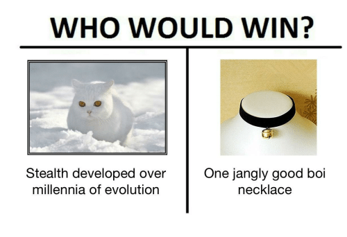 Evolution, Good, and Boi: WHO WOULD WIN?  Stealth developed over One jangly good boi  millennia of evolution  necklace