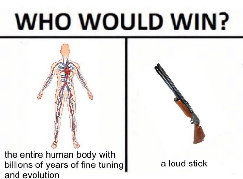 Evolution, Human, and Who: WHO WOULD WIN?  the entire human body with  billions of years of fine tuning  and evolution  a loud stick