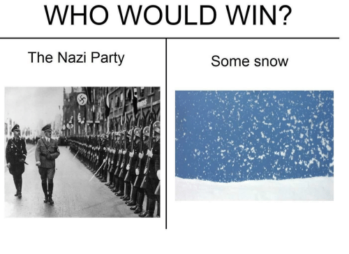 WHO WOULD WIN? The Nazi Party Some Snow | Party Meme on ME ME